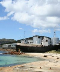 Discovery Bay – old whaling station